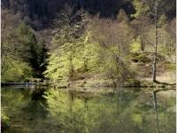15eme-lac-de-bethmale-reflet_0